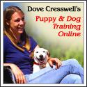 dove-dog-training-125x1252
