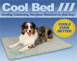 Cool_Bed_III SMALLER